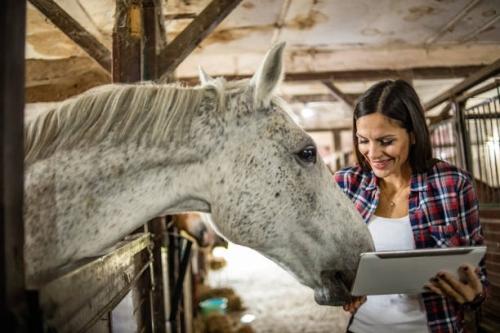 Webinar: Elementy przygotowania konia do hipoterapii, 16 czerwca (środa) godz. 19.00 – 20.30