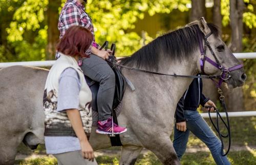 Webinar: Użytkowanie koni w hipoterapii 15.11.2021 godz 19.00